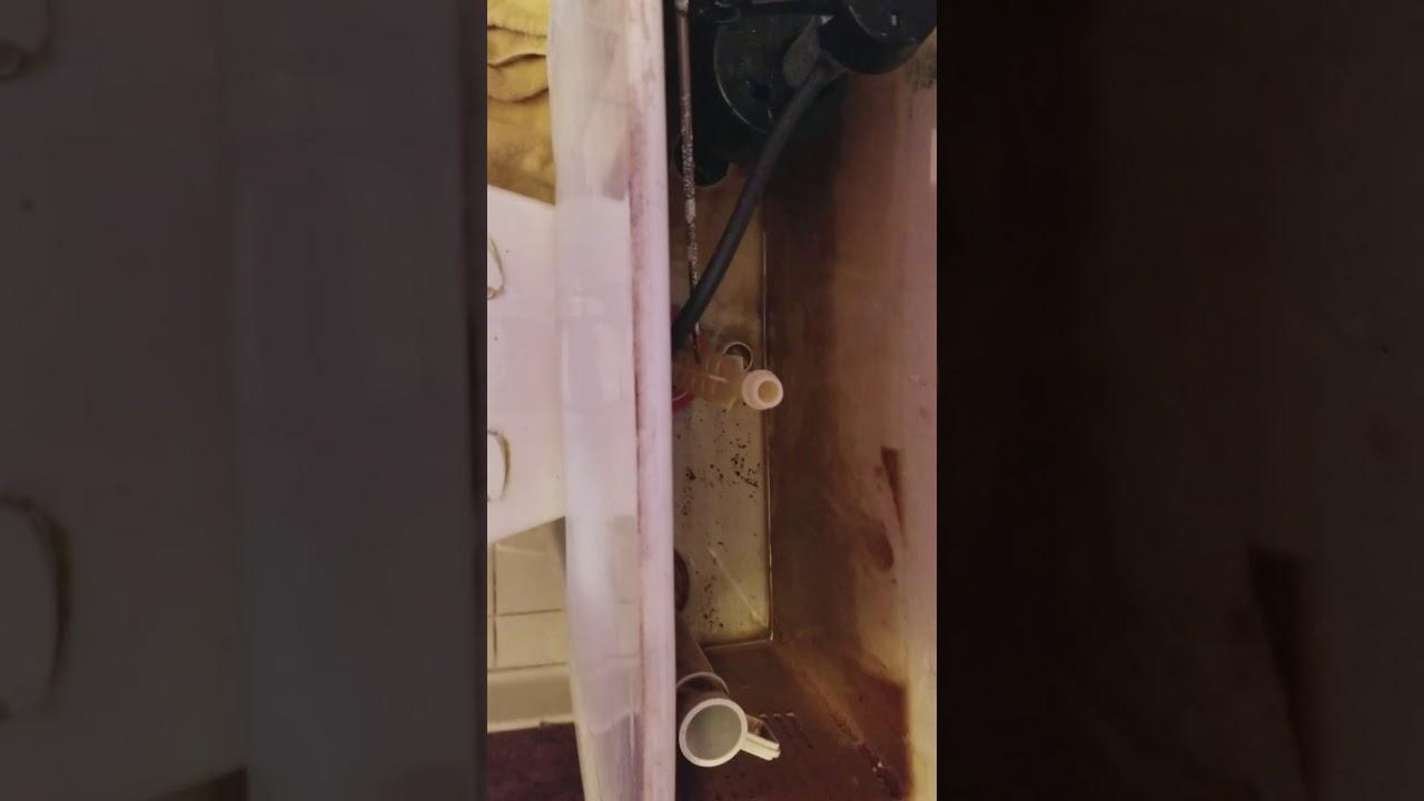 Mansfield 210 New Flush Valve Seal Still leaked - YouTube