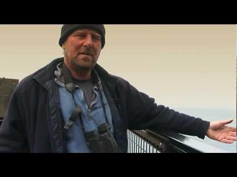 The birdman of Rathlin Island