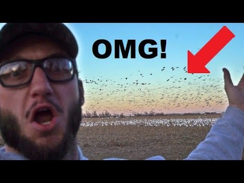 Goose And Duck Hunting Hack For Dad's! | Scouting Tips And Tricks