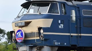 EF66 27牽引つくばエクスプレス甲種輸送 HM付!       巛巛巛巛