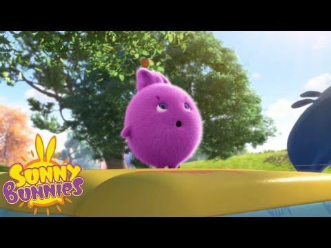Cartoons For Children | SUNNY BUNNIES - BOUNCING HERO | New Episode | Season 3