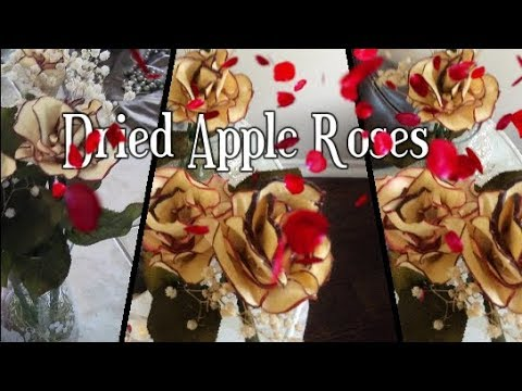 Valentine DIY #3  How To Make Dried  Apple Roses!!!