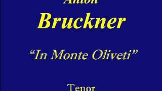 Tenor Bruckner In Monte Olivet