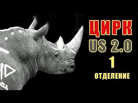 ЦиркUS 2.0 Носорог в цирке СПб Циркус 2.0 Запашные Цирк Чинизелли на Фонтанке Санкт-Петербург