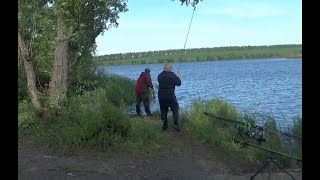 Ловля карпа на ГолодяевскомРыбалка с подписчикомРыбалка в сильный ветер