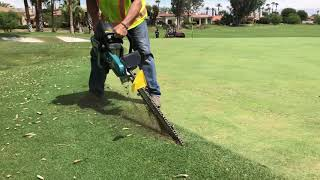 Gambar cover Golf course green maintenance: aggressive tree roots damage greens