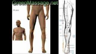 آموزش ماساژ شیاتسو shiatsu massage