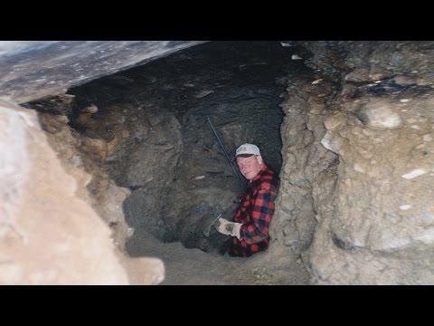 Goldmine auf der Alp Rentiert in der Schweiz