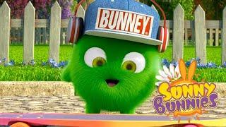 Sunny Bunnies | FLOR MÁGICA | Desenhos animados | WildBrain em Português