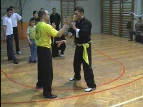 Wing Chun seminar Novi Sad 23.April.2009 Drill