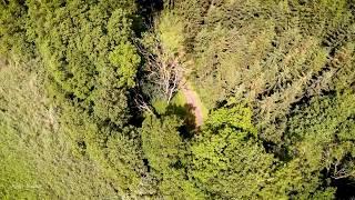 Ручна посадка в лісі, Варен Німеччина, DJI Фантом 4 про