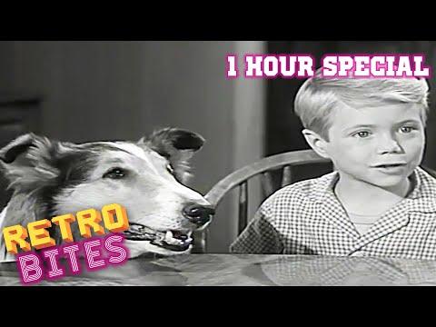 Lassie | 1 Hour Compilation | Full Episodes