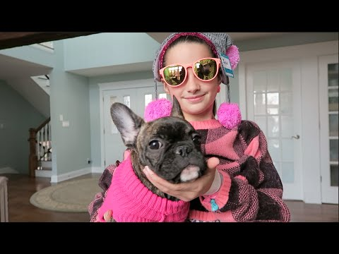 On Wednesdays We Wear Pink (WK 264) | Bratayley