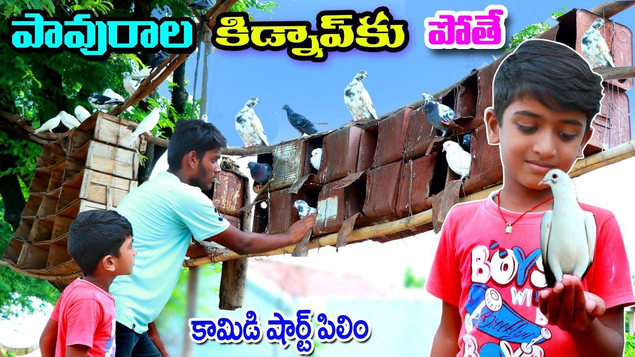 పావురాల కిడ్నాప్ కి పోతే || Pavurala kidnapki pothe || Manu videos || telugu letest all