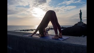How to do Downward Facing Dog - Explanation in English and Portuguese