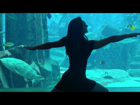 Adventures & Yoga The Lost Chambers, Atlantis Hotel The Palm, Dubai, United Arab Emirates 2017
