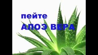 Сок Алоэ Гербалайф Похудеть Коррекция веса на канале Ново-Лайф