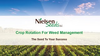Crop Rotation for weed management  with Tammy Jones