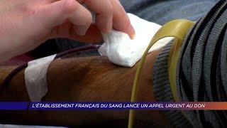 Yvelines | L'établissement français du sang lance un appel urgent au don
