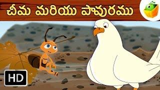 ఒక చీమ మరియు పావురం | The Ant and the Dove | Aesop Fables in Telugu | Magicbox Telugu