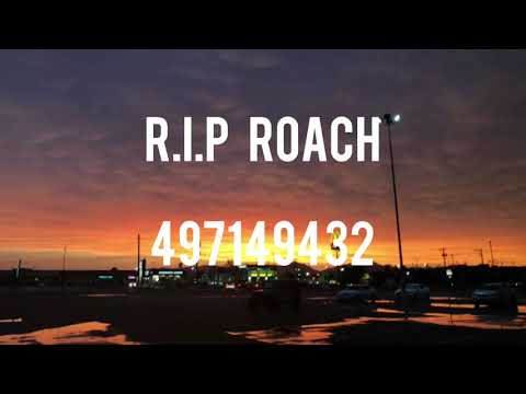 (Not Copy Righted)Rip Roach Roblox Id Code