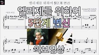 베토벤(Beethoven) - 엘리제를 위하여 5단계 …