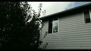 Kermit || A horror movie trailer ||