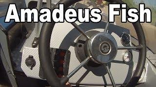 Amadeus Fish
