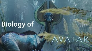 The Biology Of James Cameron's Avatar
