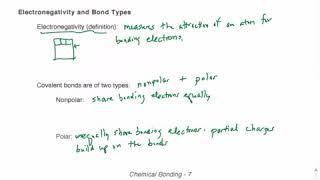 Bonding Video 8