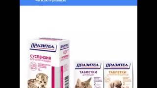Препарат от глистов у кошки.