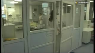 В больницах Краснодара в октябре от отравления грибами погибли 3 человека