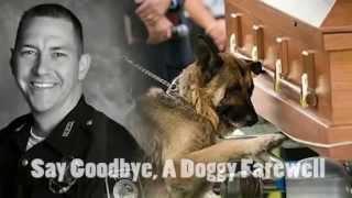 Police dog Figo says goodbye with his partner Jason Ellis police.