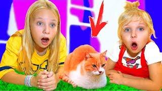 Мама против кота в доме или Кокосик вернулся
