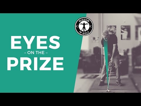 EYES ON THE PRIZE FOR CONSISTENCY  Wisdom in Golf   Shawn Clement