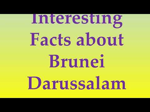 Interesting Facts about Brunei Darussalam