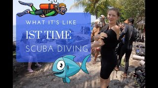 Discover Scuba Diving - First Time Try Dive!