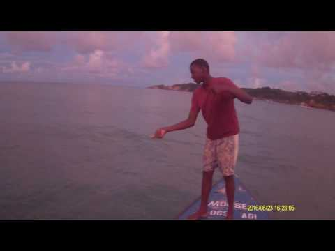 Tarpon Fishing In Dominica No Rod