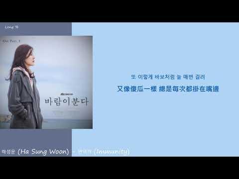 [韓繁中字] 河成雲하성운 (HA SUNG WOON) - 면역력(Immunity) (Lyrics歌詞/가사)