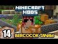 Minecraft Mods Indonesia - Berkebun Untuk Kehidupan! (14)