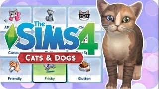 pet traits overview sims 4 cats and dogs 🐱