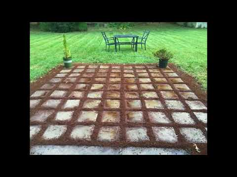 Easy Grass Grout Paver Patio WithScotts EZ Seed®
