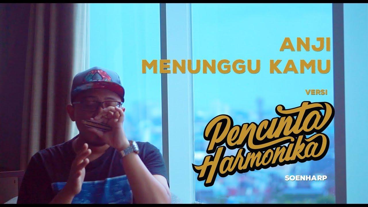 Anji Menunggu Kamu Harmonika Cover By Soenstudio