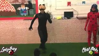 Personagem Vivo - Ladybug e Cat Noir (Toque de Magia Produções)