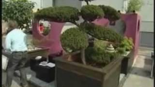 A Prime-Garden Bt. ezüstéremmel díjazott kertje, az Első Magyar Kertépítő versenyen