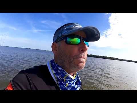 What Happened To The Sea Grass In The Indian River Lagoon, Feb 02/2018