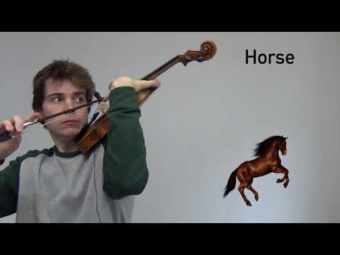 Animal sounds on violin 2