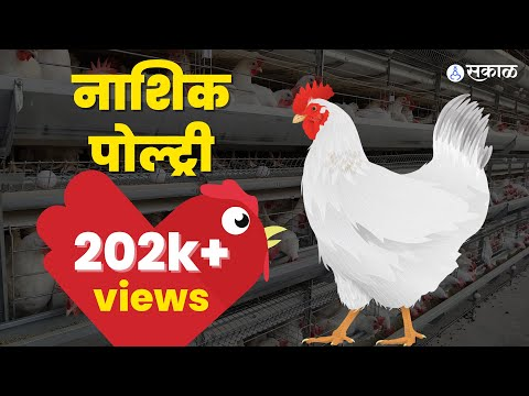 dairy farm project report in hindi