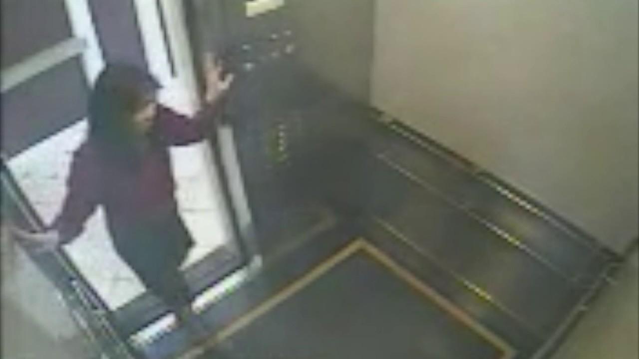 ผลการค้นหารูปภาพสำหรับ elisa lam cecil hotel elevator