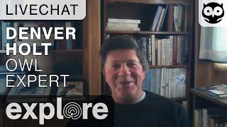 Denver Holt - Long Eared Owls - Live Chat